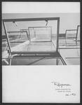 Response, 1967 Summer by Daemen College