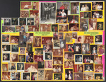 Vermillion Room, Skateland Photo Collage (Item No. VR-05)
